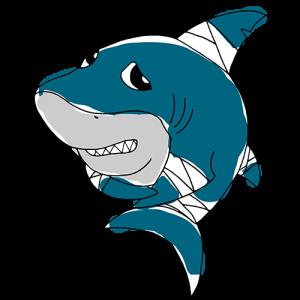 https://www.biosfera1.com/wp-content/uploads/2019/09/requin_500-300x300.png